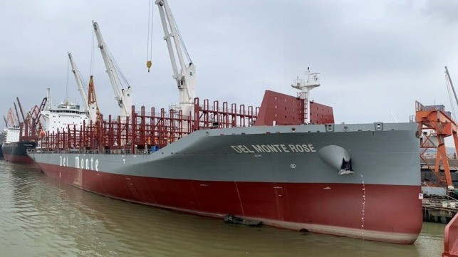 New Energy Efficient Class of Reefer Container Ships Enter Service