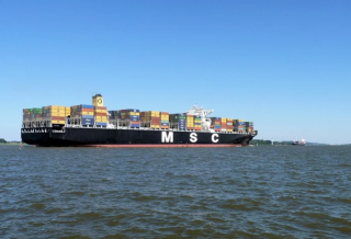 UAE Bans MSC-Operated Boxship for Violating Carriage Ban